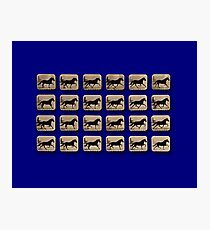 Muybridge - Locomotion Theory 1 - Horse and Cart - Blue Photographic Print