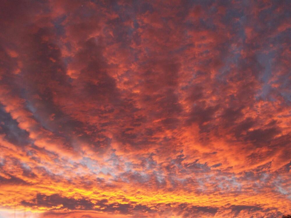Sunset Slendor by Erika101