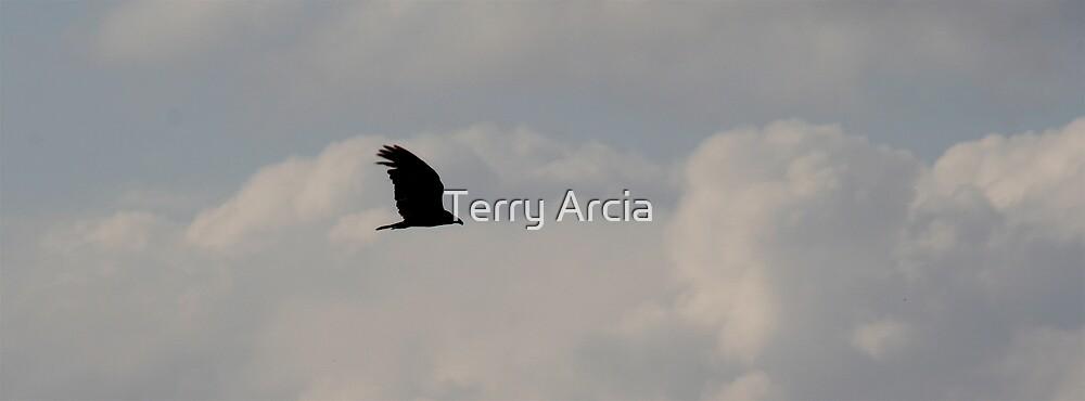 Freedom by Terry Arcia