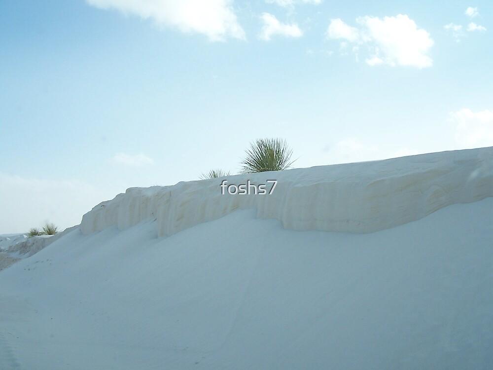 white horizon by foshs7
