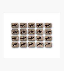 Eadweard Muybridge – 1830-1904 – Locomotion Theory – Horse and Jump – White Photographic Print