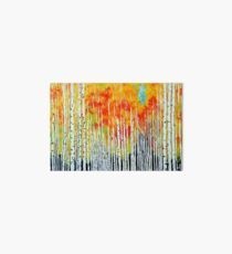 Autumn Aspen Trees Quaking Colorado Colorful Forest Art Board