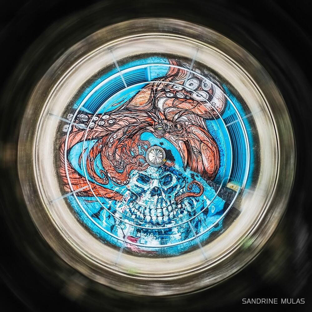 « Octopus skull » par SANDRINE  MULAS