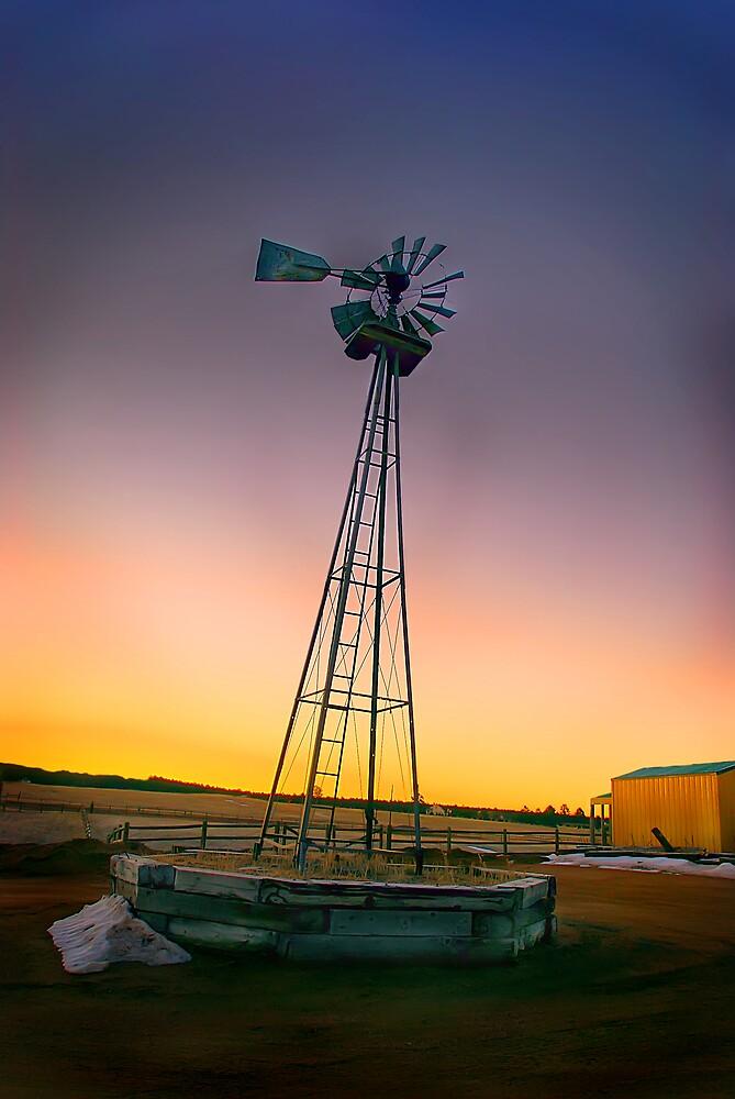 windmill colorado by Melinda Kerr