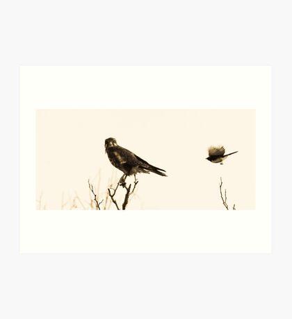 when little birds go bad.... Art Print