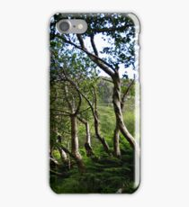 Ireland, Ring of Kerry iPhone Case/Skin