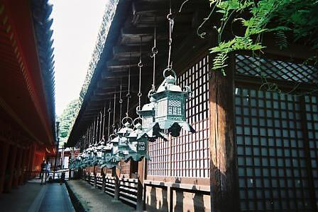 Alleyway between shrines in Nara by satsumagirl