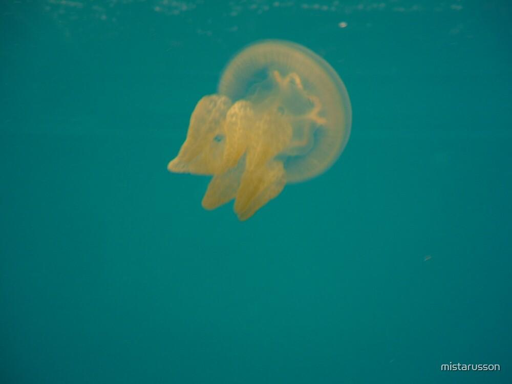 Jellyfish 1 by mistarusson