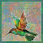 Bunter Kolibri von Celso Studio