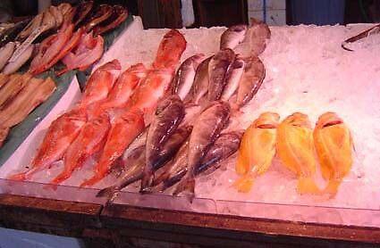 Sapporo Fish Market by satsumagirl