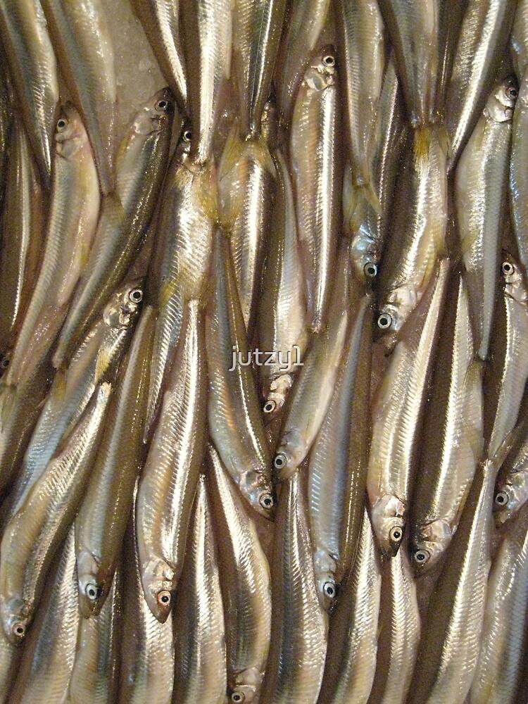 Fishy Business by jutzy1