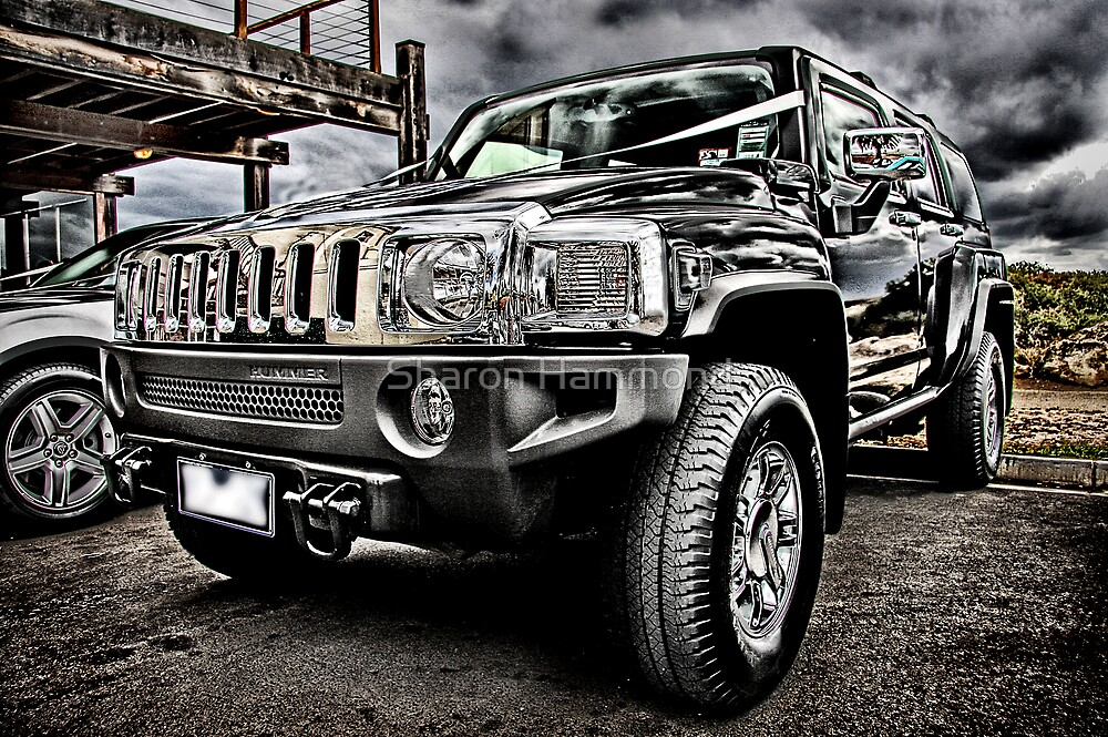 The Hummer by Sharon Hammond