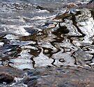 Water Abstract 15 by Deborah Crew-Johnson