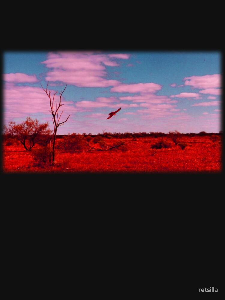 Desert Hawk by retsilla