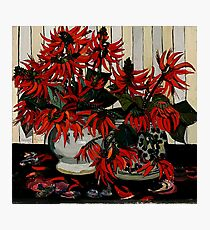 "Margaret Preston Oil Painting ""Coral Flowers"" Photographic Print"