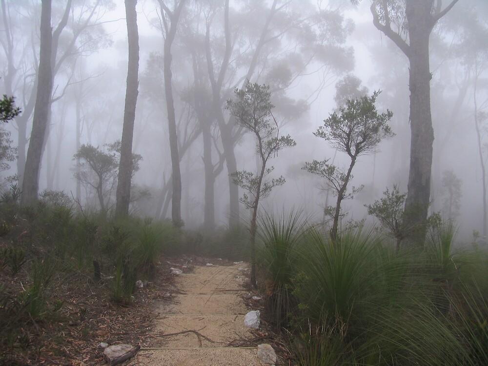 A misty walk. by Klikklak