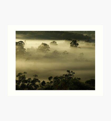 Morning Mirage.. Art Print