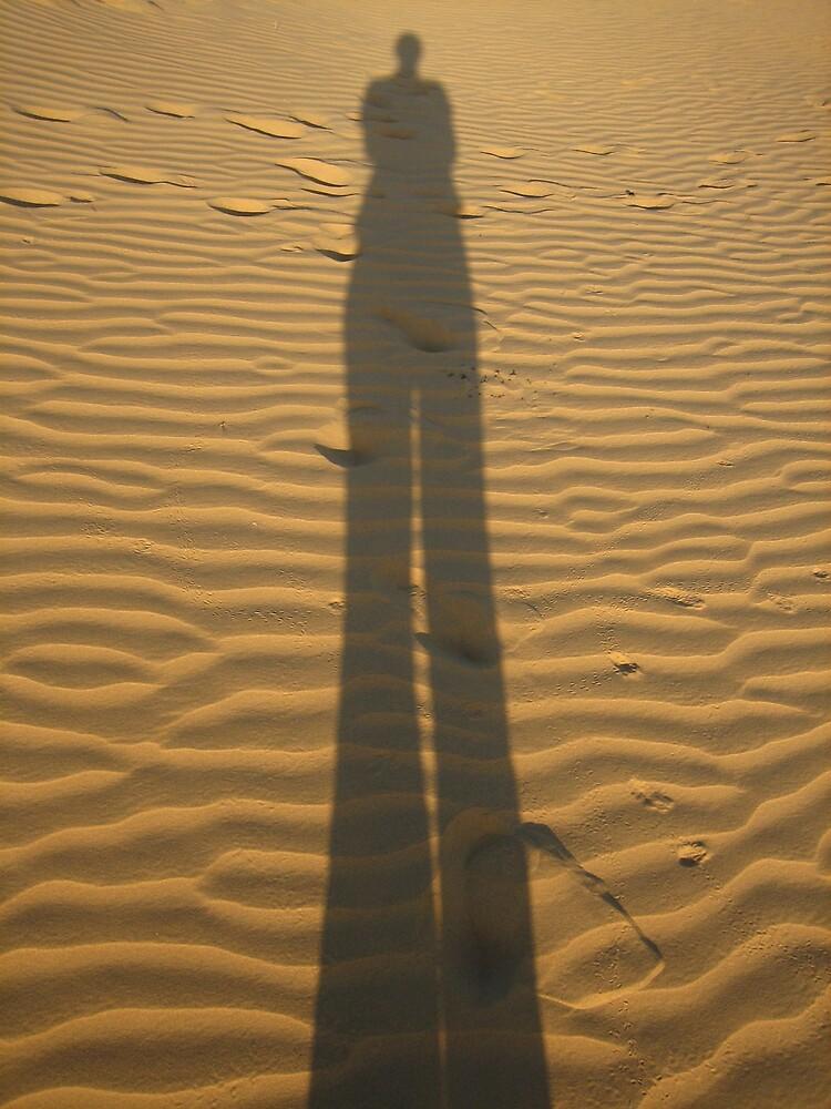 Thar Desert, Rajasthan INDIA by soundmind
