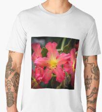 Dublin Botanic Gardens Men's Premium T-Shirt