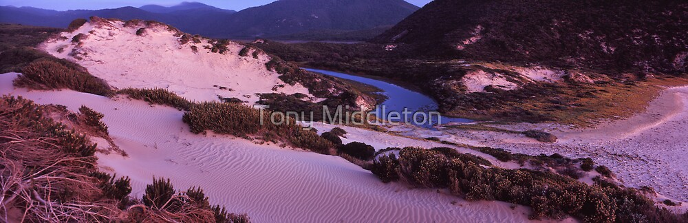 Darby river dunes - Wilsons Promontory by Tony Middleton