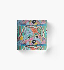 Cotton Candy Westie West Highland Dog Pet Terrier Scottish Scotland Cairn Border Glen Fox Kerri Schnauzer Norwich Norfolk Yorkshire Dogs Owner Lover Jackie Carpenter Art Acrylic Block