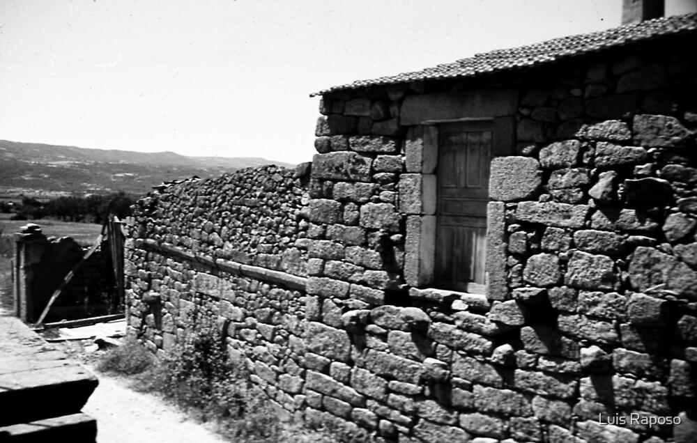 Abandonada by Luis Raposo