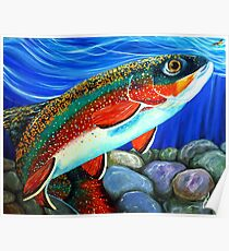 Brook Trout Fish Fly Fishing River Rock Brookie Sports  Poster