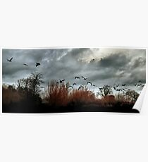 Wildfowl Dusk Poster