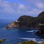 Heceta Head Lighthouse by IrishEyesMrsZ