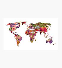 It's Your World Photographic Print
