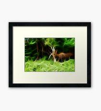 Wildlife Framed Print