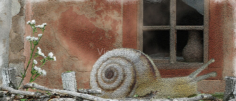 snail by VioDeSign
