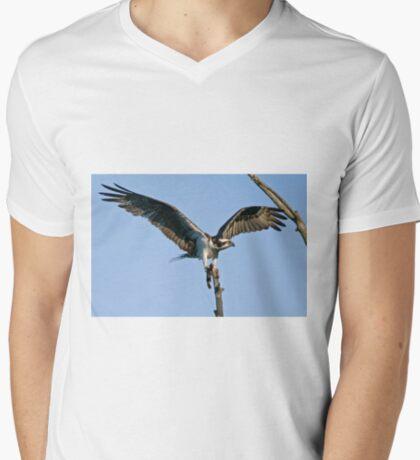 Osprey - Ottawa, Ontario T-Shirt