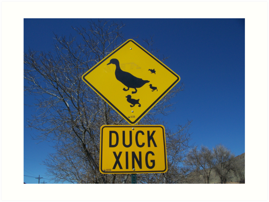 Duck Crossing by JLDunn