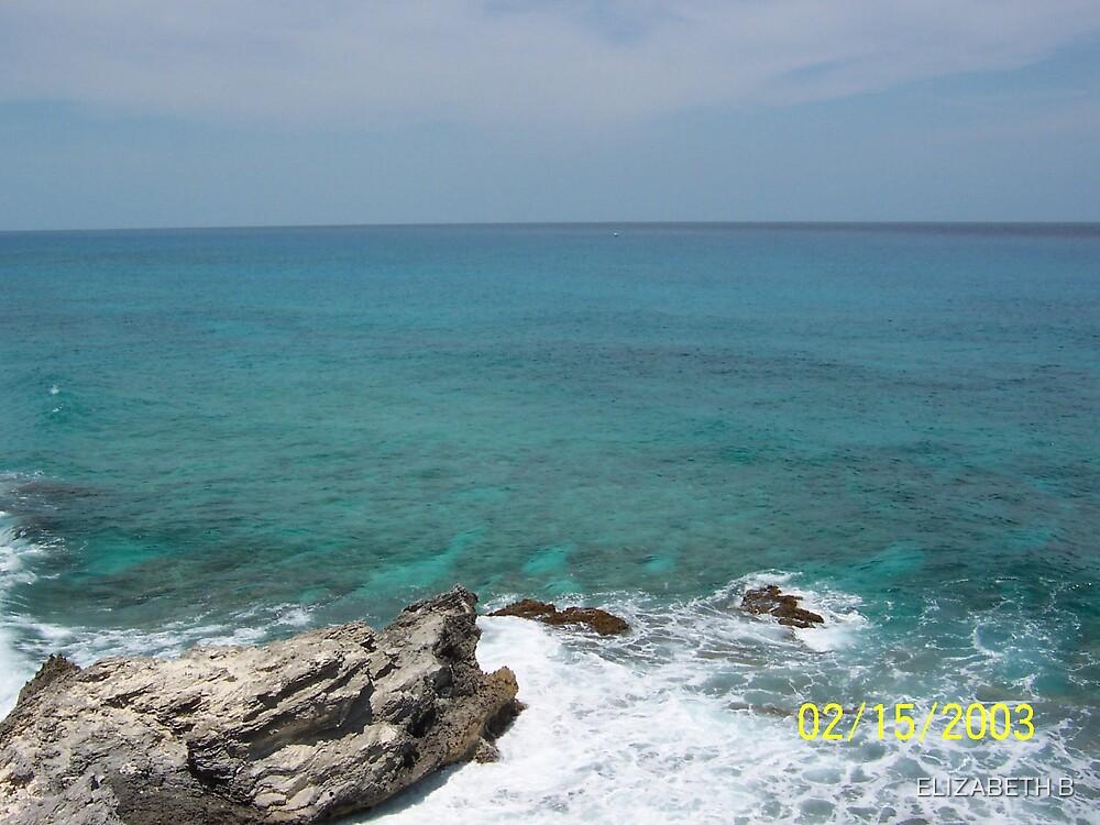 ocean waves by ELIZABETH B