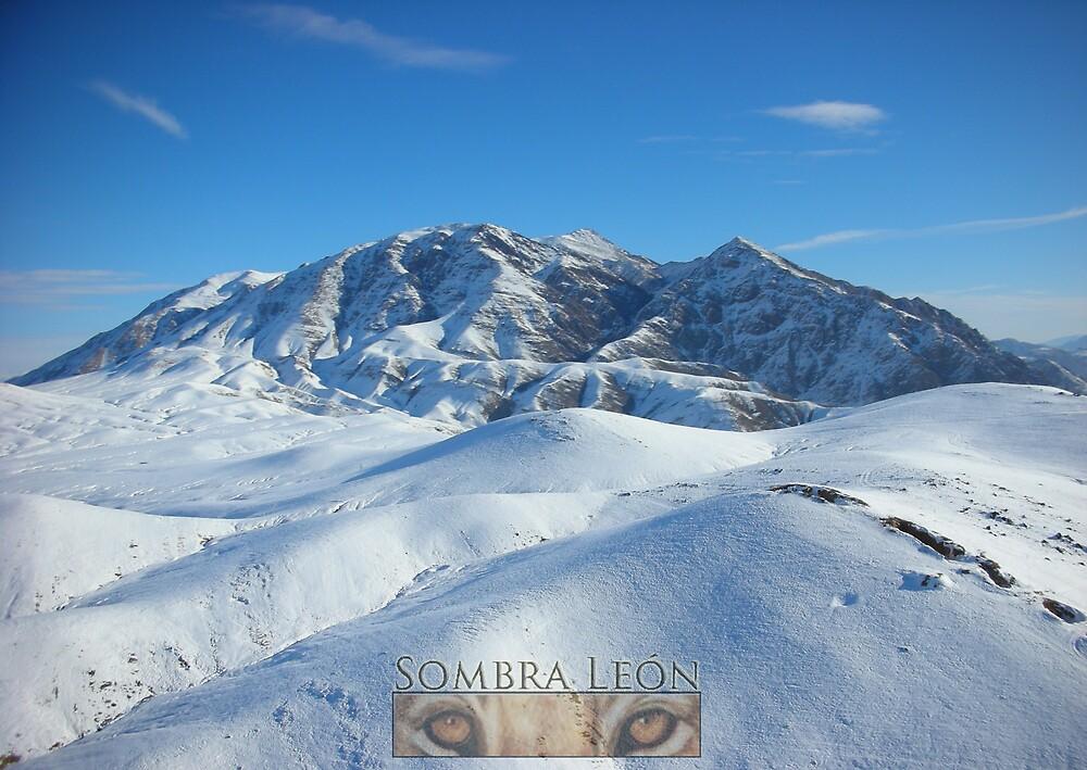 Ridge by KombatMario