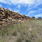 Stone Fence, Sedan Hill,South Australia 2011 by muz2142