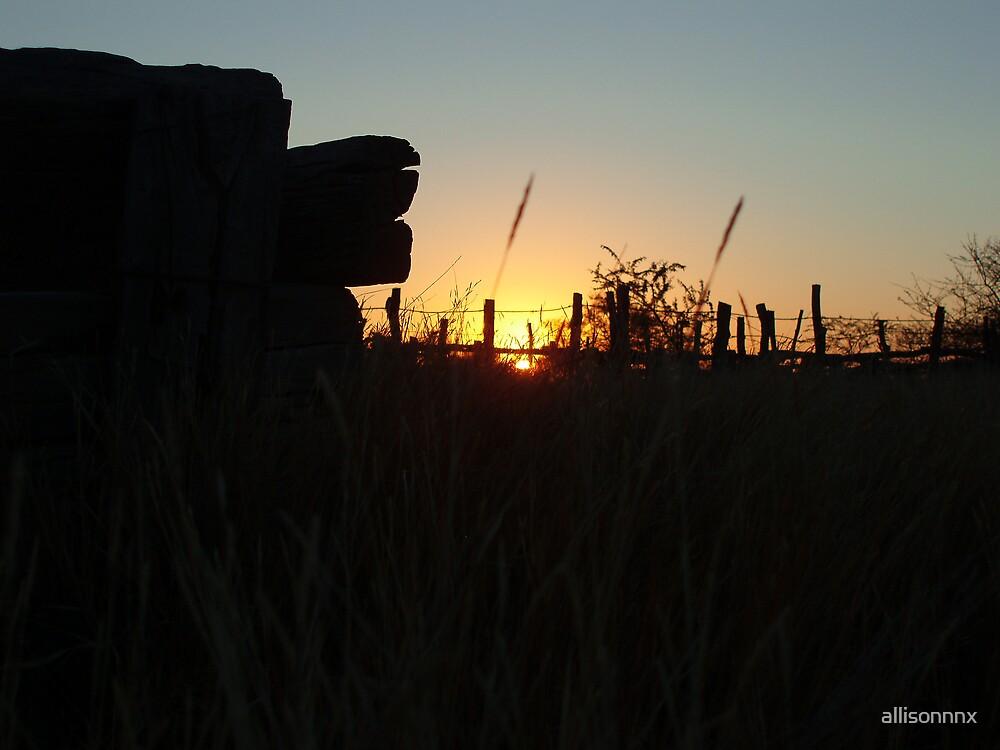 Nyamandlovu Part III by allisonnnx