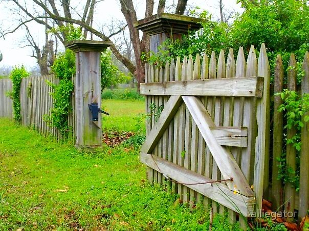 Picket Fences by alliegator