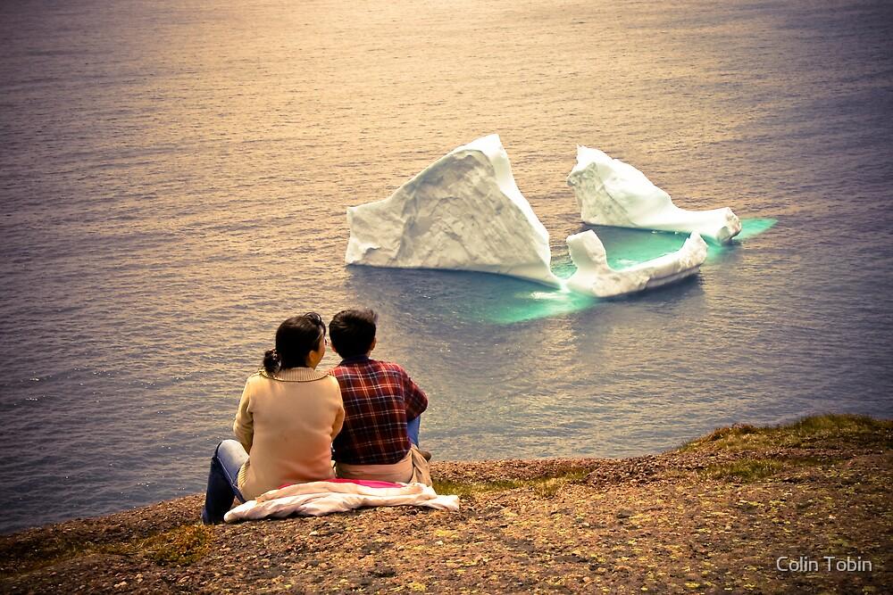 Iceberg Alley by Colin Tobin