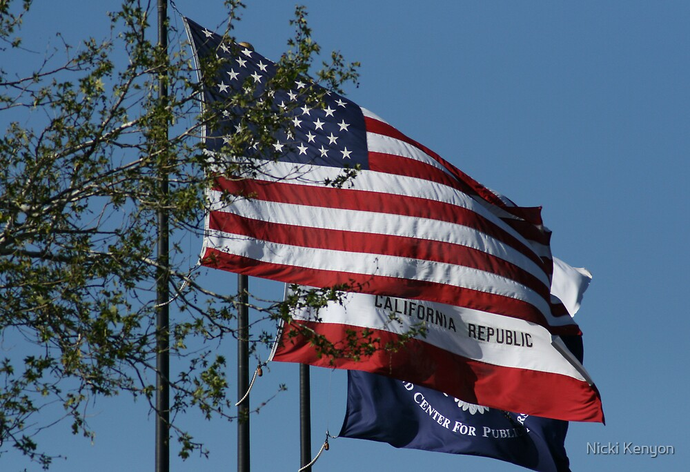 Flags outside the Reagan Library, California by Nicki Kenyon