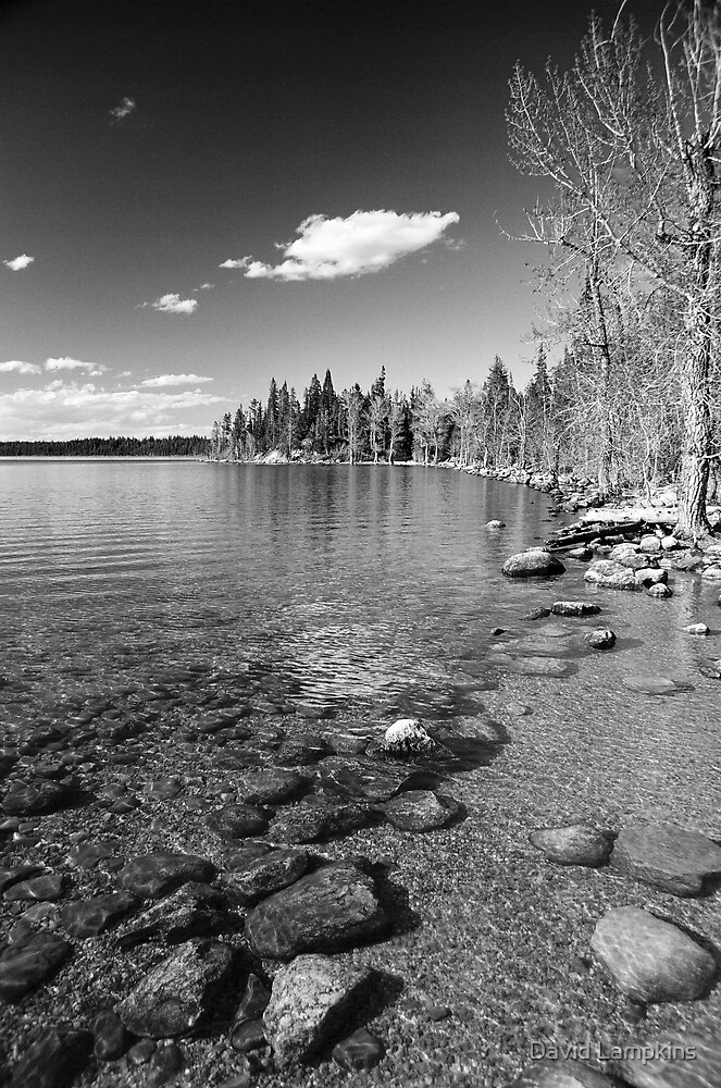 Shoreline Serenity by David Lampkins
