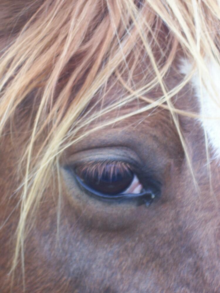 I see you by Rebecca Ogden