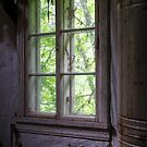 13.6.2017: Six Paned Window by Petri Volanen