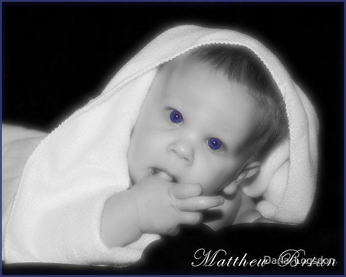 Baby Blues by Darla  Logsdon