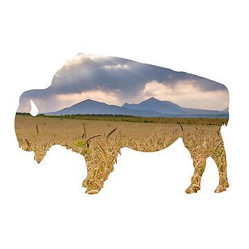 Bison: Spirit of the Plains by Phantomtollboy