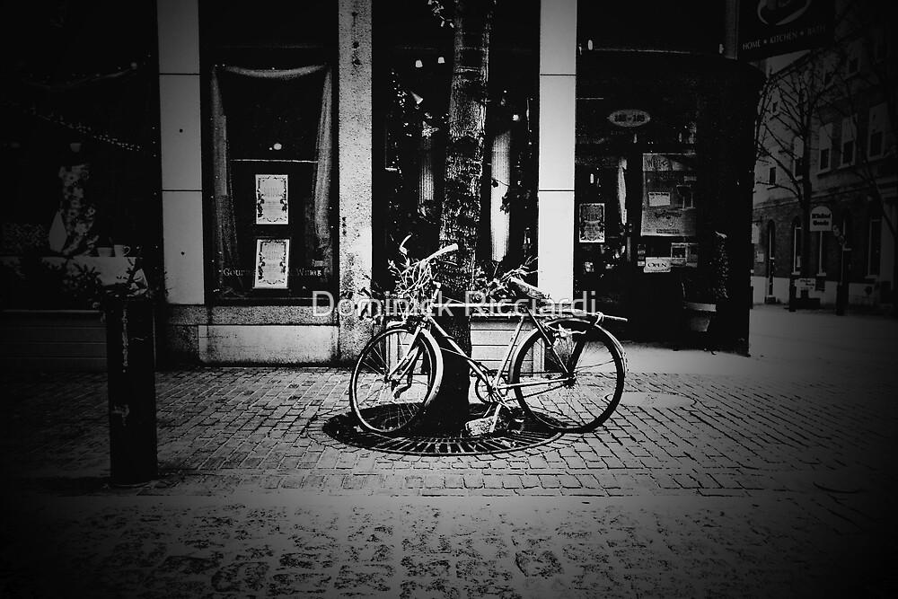 That Old Bike by Dominick Ricciardi
