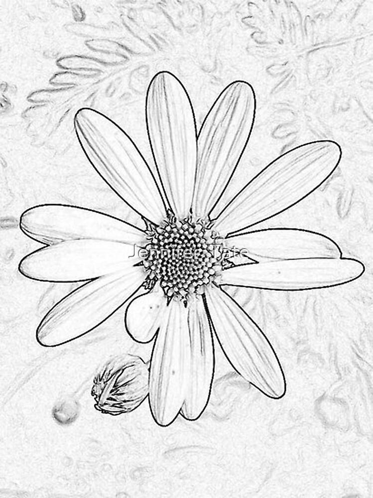 Daisy Edited Sketch by Jennifer  Tate
