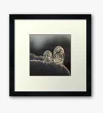 Snow bubbles Framed Print
