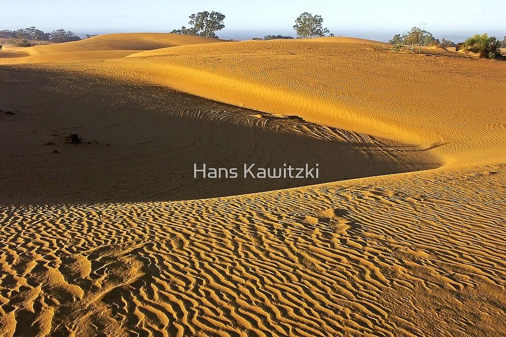 1268 The Dune by Hans Kawitzki